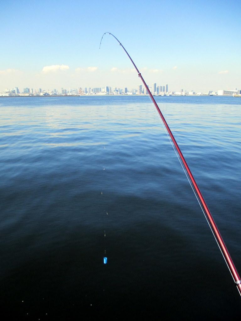 サビキ釣りの始め方 | 海釣りス...
